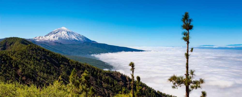Tenerifei élmények – Németh Anita beszámolója